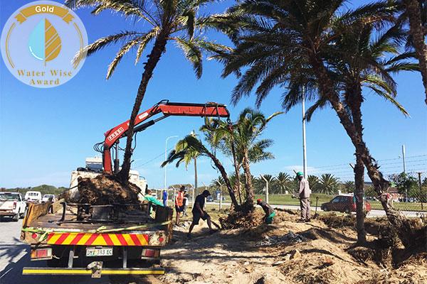 Picket Lane Landscaping & Irrigation <br/>for<br/>Nelson Mandela University Engineering Building 02