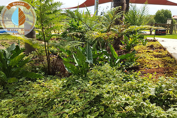 Bidvest Services Pty Ltd, t/a Bidvest Top Turf <br/>for<br/> The Kingdom Resort: Jungle Bar