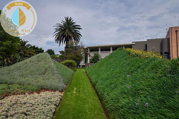 FSG Property Services, Landscaping Division <br/>for<br/> Stark Studios
