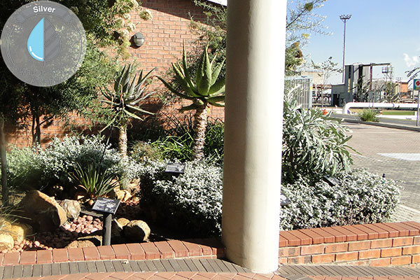 Rothe Plantscapers <br/>for<br/> Sasol Brandspruit Living Quarters - Block 5